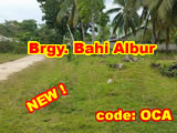 Albur Bohol - Lot for sale